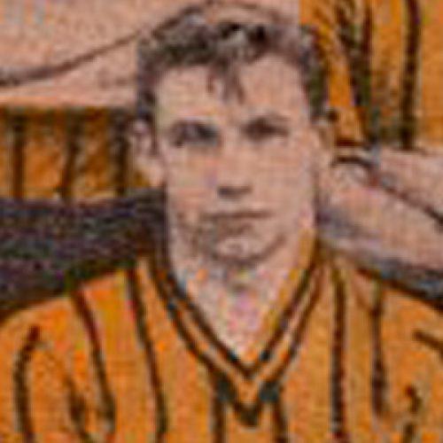 Bert Llewellyn