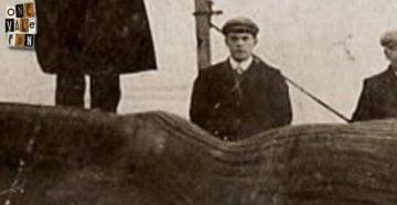 Arthur Box - Port Vale