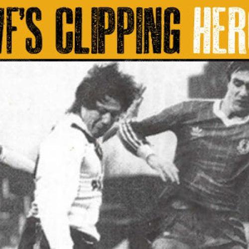 clipping-fox