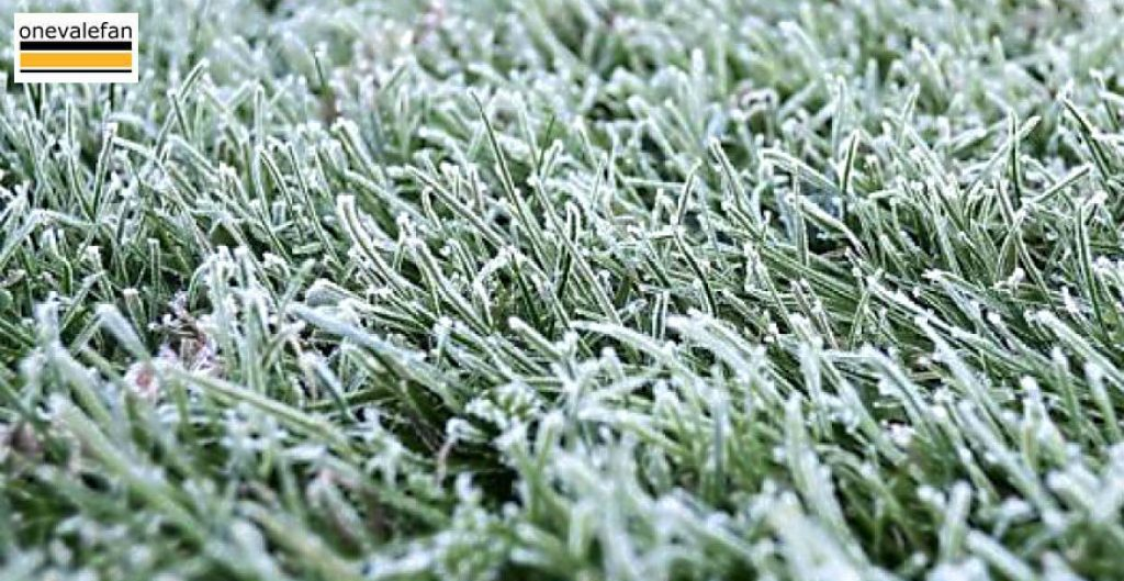 Frozen pitch
