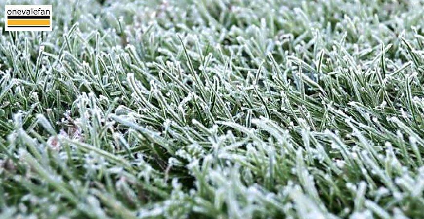 Frozen pitch